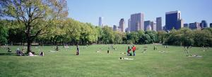 Group of People in a Park, Sheep Meadow, Central Park, New York City, New York State, USA