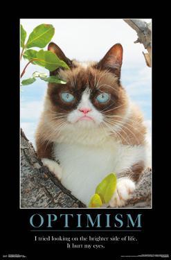 GRUMPY CAT - BRIGHTER SIDE