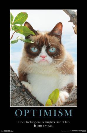 https://imgc.allpostersimages.com/img/posters/grumpy-cat-brighter-side_u-L-F9DGYT0.jpg?p=0