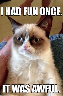 Grumpy Cat - Fun