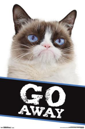Grumpy Cat- Go Away