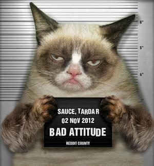 Grumpy Cat Mugshot Humor Poster