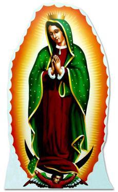 Guadalupe Lifesize Standup