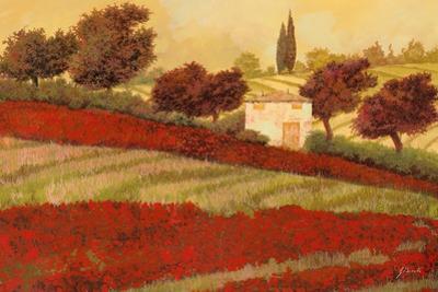 Papaveri Toscana I by Guido Borelli