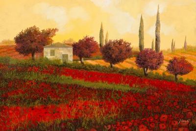 Papaveri Toscana II by Guido Borelli