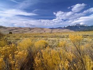 Great Sand Dunes National Monument by Guido Cozzi