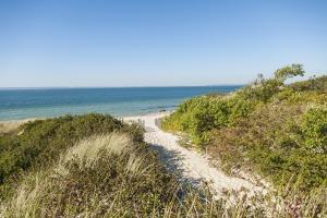 Lambert's Cove Beach by Guido Cozzi