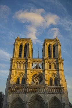 Notre Dame Cathedral by Guido Cozzi