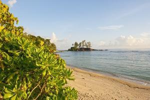 Petite Ile at Port Glaud, Mahe, Seychelles, Indian Ocean Islands by Guido Cozzi