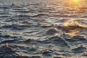 Sea at Sunset, Korcula Island, Croatia by Guido Cozzi