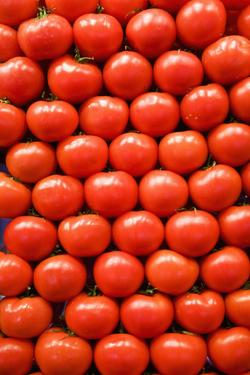 Tomatoes at Boqueria Market in Barcelona by Guido Cozzi