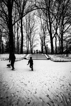 Central Park Steps by Guilherme Pontes