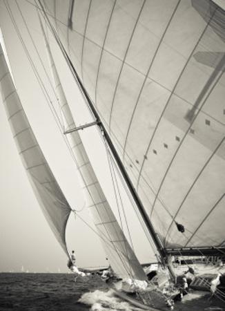 Sous le vent by Guillaume Plisson