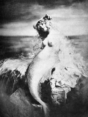 Nude As Mermaid, 1898 by Gulick