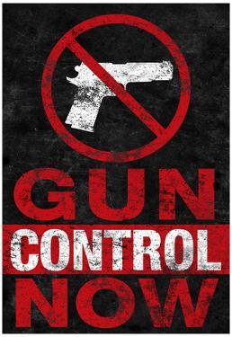 Gun Control Now