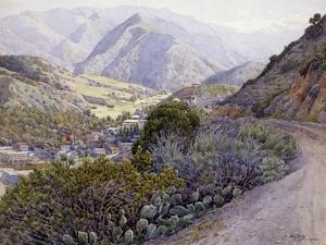 Catalina by Gunnar Widforss