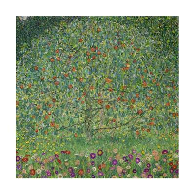 Apple Tree I, 1911 or 1912 Oil on canvas (109 x 110 cm) Estates of Ferdinand and Adele Bloch-Bauer. by Gustav Klimt
