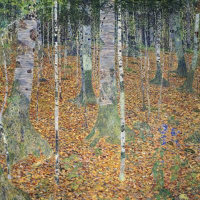 Birch Forest, 1903 by Gustav Klimt