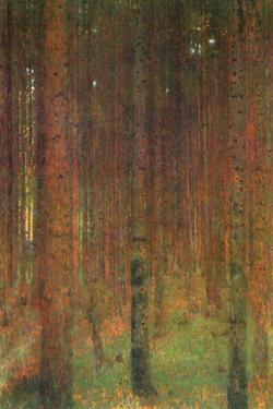 Gustav Klimt Fir Forest II