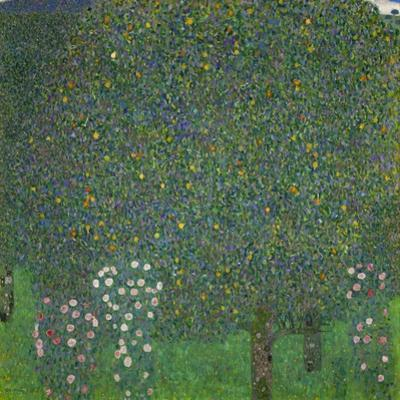 Roses under the trees. 1918 Canvas, 110x110 cm. by Gustav Klimt