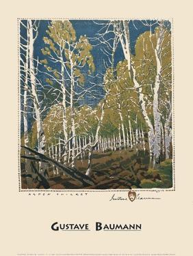 Aspen Thicket by Gustave Baumann