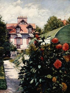Dahlias, Petit Gennevilliers Garden by Gustave Caillebotte