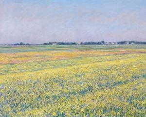The Plain of Gennevilliers, Yellow Fields by Gustave Caillebotte