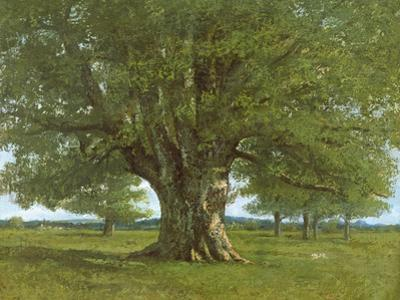 The Oak of Flagey, Called Vercingetorix by Gustave Courbet