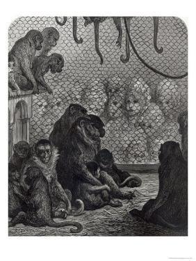 London Monkeys by Gustave Dor?