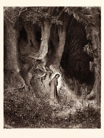Dante in the Gloomy Wood