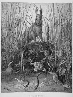 The Hare and the Frogs, from 'The Fables' of La Fontaine, Engraved by Stephane Pannemaker… by Gustave Doré