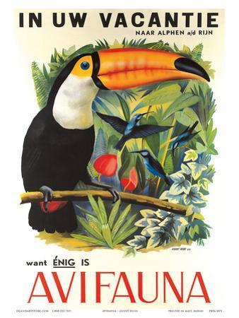 Avifauna Bird Park: Holland c.1951 by Guust Hens