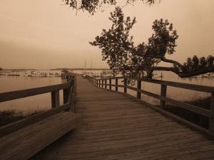 Bridge Leading to Pier by Guy Cali