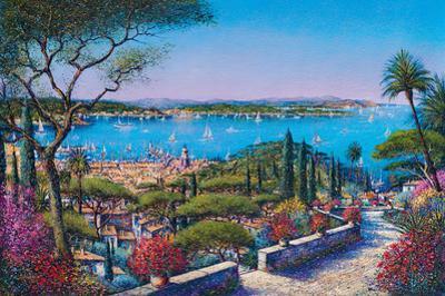 Saint-Tropez by Guy Dessapt