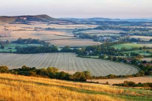 Chalk Downland and Farmland Viewed from Wilmington Hill, South Downs Np, East Sussex, England, UK by Guy Edwardes