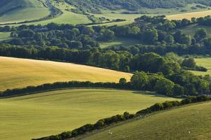 View of Downland and Arable Farmland from Wilmington Hill, South Downs Np, East Sussex, UK by Guy Edwardes