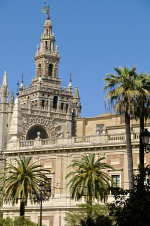 Cathedral and Giralda, Seville, UNESCO World Heritage Site, Andalusia, Spain, Europe by Guy Thouvenin