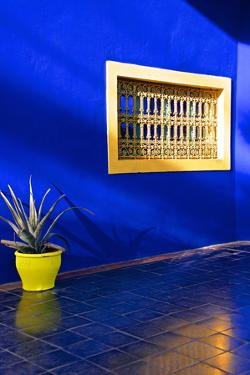 Detail of Blue House and Yellow Plant Pot in Majorelle Garden by Guy Thouvenin