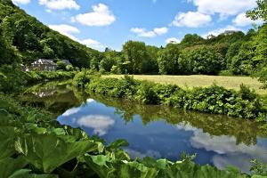 River Rance Banks, Dinan, Brittany, France, Europe by Guy Thouvenin