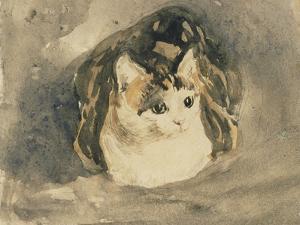 Cat by Gwen John
