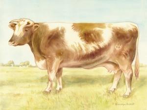 Cow by Gwendolyn Babbitt