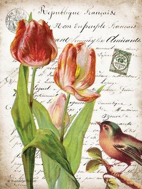 French Botanical II by Gwendolyn Babbitt