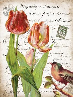 French Botanical II by Gwendolyn Babbitt