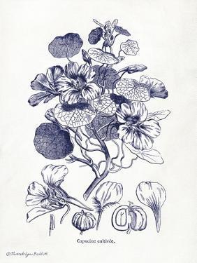 Indigo Botanical IV by Gwendolyn Babbitt
