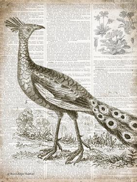 Vintage Bird I by Gwendolyn Babbitt