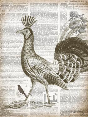 Vintage Bird II by Gwendolyn Babbitt