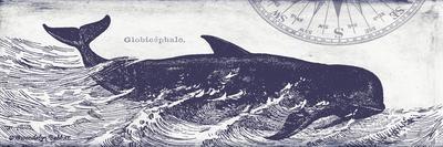 Whale on Cream I