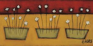 Flores du Campo by H Alves