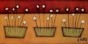 Flores du Campo by H^ Alves
