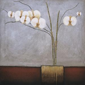 Orchidee I by H. Alves
